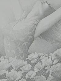 silverpoint - Nancy de Zwart